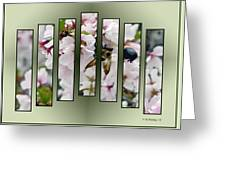 Bees And Blossoms Greeting Card