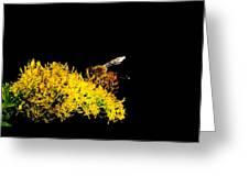 Bee's Work Greeting Card
