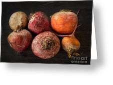 Beets In Different Colors On A Dark Background Greeting Card