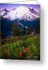 Before Dawn At Mount Rainier Greeting Card