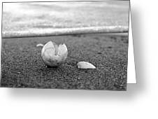 Beginnings Black And White Greeting Card
