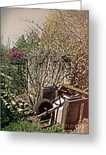 Behind The Garden Greeting Card by Tom Gari Gallery-Three-Photography