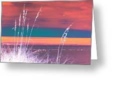 Behind The Sea Oats Greeting Card