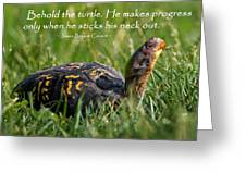 Behold The Turtle Greeting Card