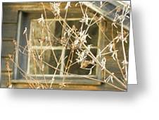 Beige Window At The End Of Winter Greeting Card