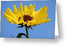 Bright Yellow Happy Sunshine Greeting Card