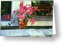 Bel-air Bougainvillea Pot Greeting Card by David Lloyd Glover