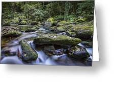 Belelle River Neda Galicia Spain Greeting Card