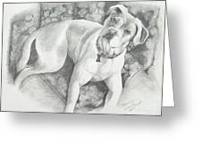 Bella My Pup Greeting Card by Joette Snyder