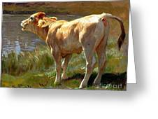 Bellowing Cow Greeting Card