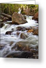 Below Alberta Falls II Greeting Card
