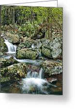 Below Mina Sauk Falls 1 Greeting Card