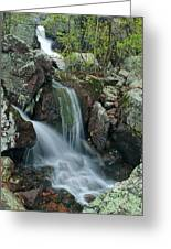 Below Mina Sauk Falls 4 On Taum Sauk Mountain Greeting Card