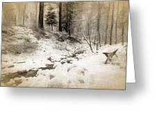 Bench By Creek Greeting Card