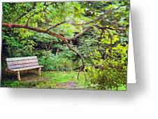 Bench In Park  Greeting Card