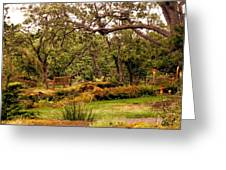 Bench In The Garden Greeting Card
