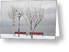 Bench On Lakefront In Winter Greeting Card