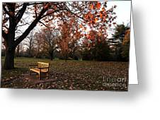 Bench Under The Tree Greeting Card