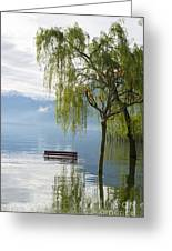 Bench With Trees On A Flooding Alpine Lake Greeting Card