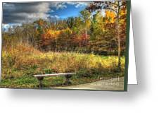 Benched In Autumn Greeting Card