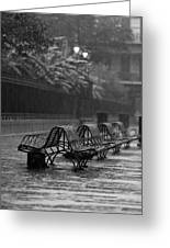 Benches In The Rain Bw Greeting Card