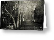 Bend In The Road 2 Greeting Card