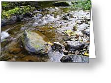 Bending Between The Rocks Greeting Card