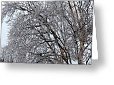 Bending With Ice Greeting Card