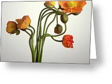 Bendy Poppies Greeting Card