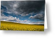 Beneath The Gloomy Sky Greeting Card