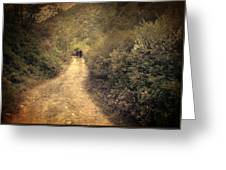 Beneath The Woods Greeting Card