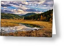 Benewah Lake Wild Rice Fields Greeting Card