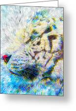 Bengal Explosion Greeting Card