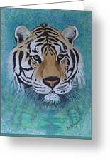 Bengal Tiger In Water Greeting Card by David Hawkes