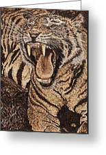 Bengal Tiger Greeting Card by Vera White