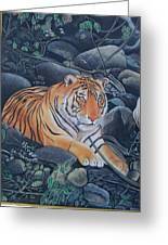 Bengal Tiger Wild Life Realistic Painting Water Color Handmade Artwork India Uk Greeting Card