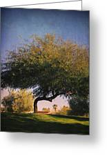 Bent But Not Broken Greeting Card by Laurie Search