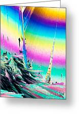 Benzoic Acid Microcrystals Coloful Abstract Art Greeting Card