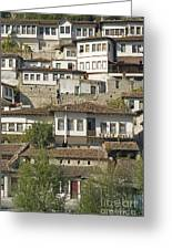 Berat Old Town In Albania Greeting Card