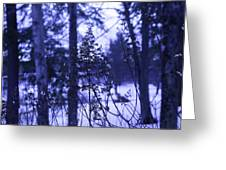 Berkshires Winter 8 - Massachusetts Greeting Card