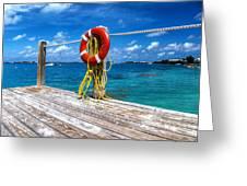 Bermuda Lifebelt Bite Greeting Card