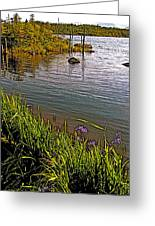Berry Hill Pond In Gros Morne Np-nl Greeting Card