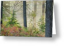 Berry Patch Pano Greeting Card