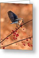 Berry Picking Bluebird Greeting Card