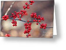 Berry Sparkles Greeting Card