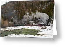 Beside The Animas River Greeting Card