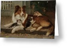 Best Of Friends Greeting Card by Wilhelm Schwar