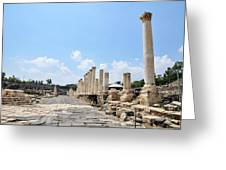 Bet Shean (scythopolis) Greeting Card