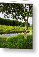 Bethel Landscape 3 Greeting Card