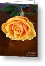 Betty's Rose Greeting Card
